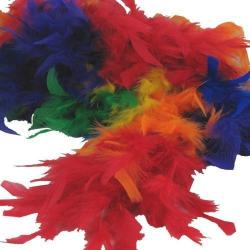 Feather Boa- Rainbow- 6 Foot