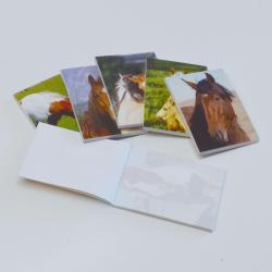 17686 - Horse Memo Pad- 6 Assorted Designs