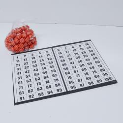 Raffle or Bingo Balls in heavy canvas bag and 100 number control masterboard